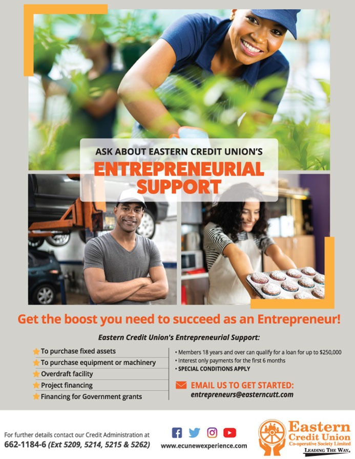 Entrepreneurial Support